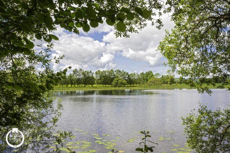 cors-caron-lake